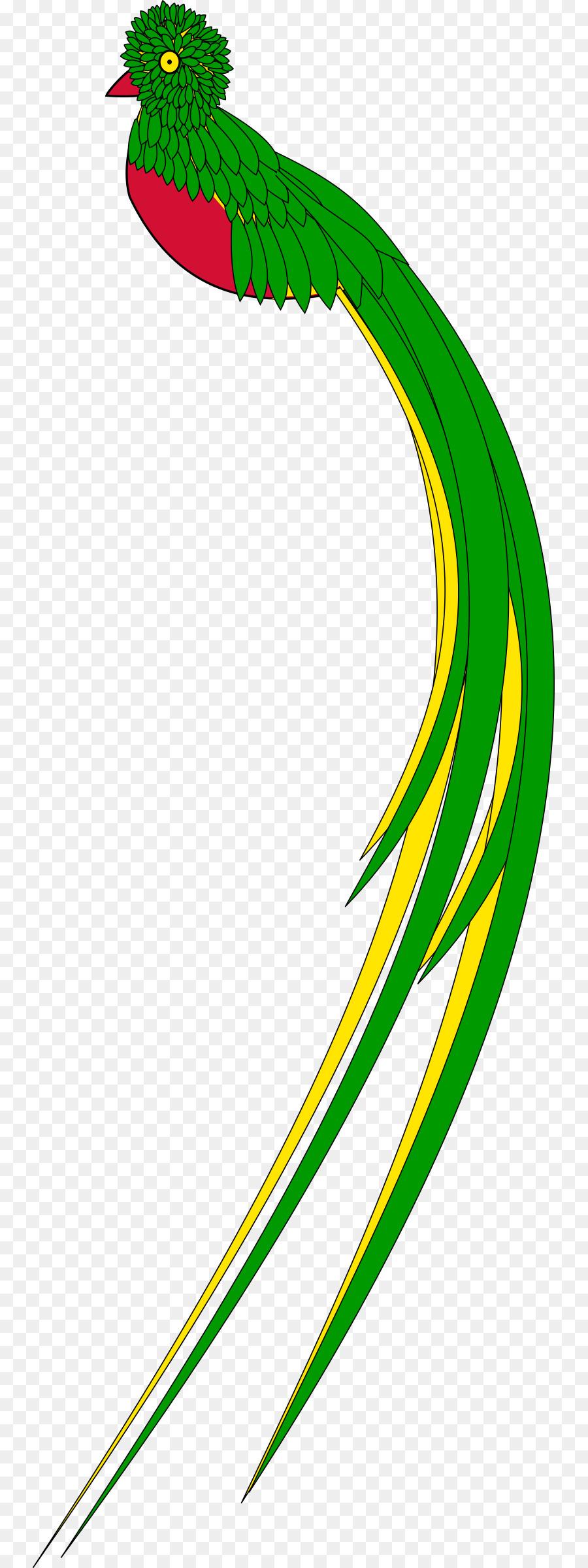 900x2400 Guatemala Quetzal Clip Art