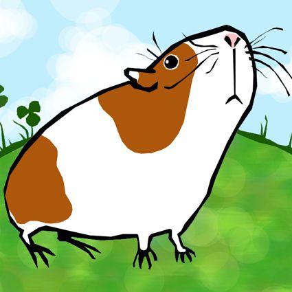 Guinea Pig Clipart