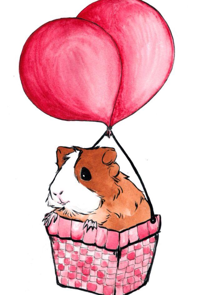 640x942 Guinea Pig In A Hot Air Balloon Cute Creatures