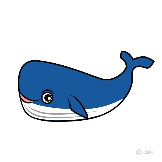 540x540 Free Whale Character Clip Art Cartoon Amp Clipart