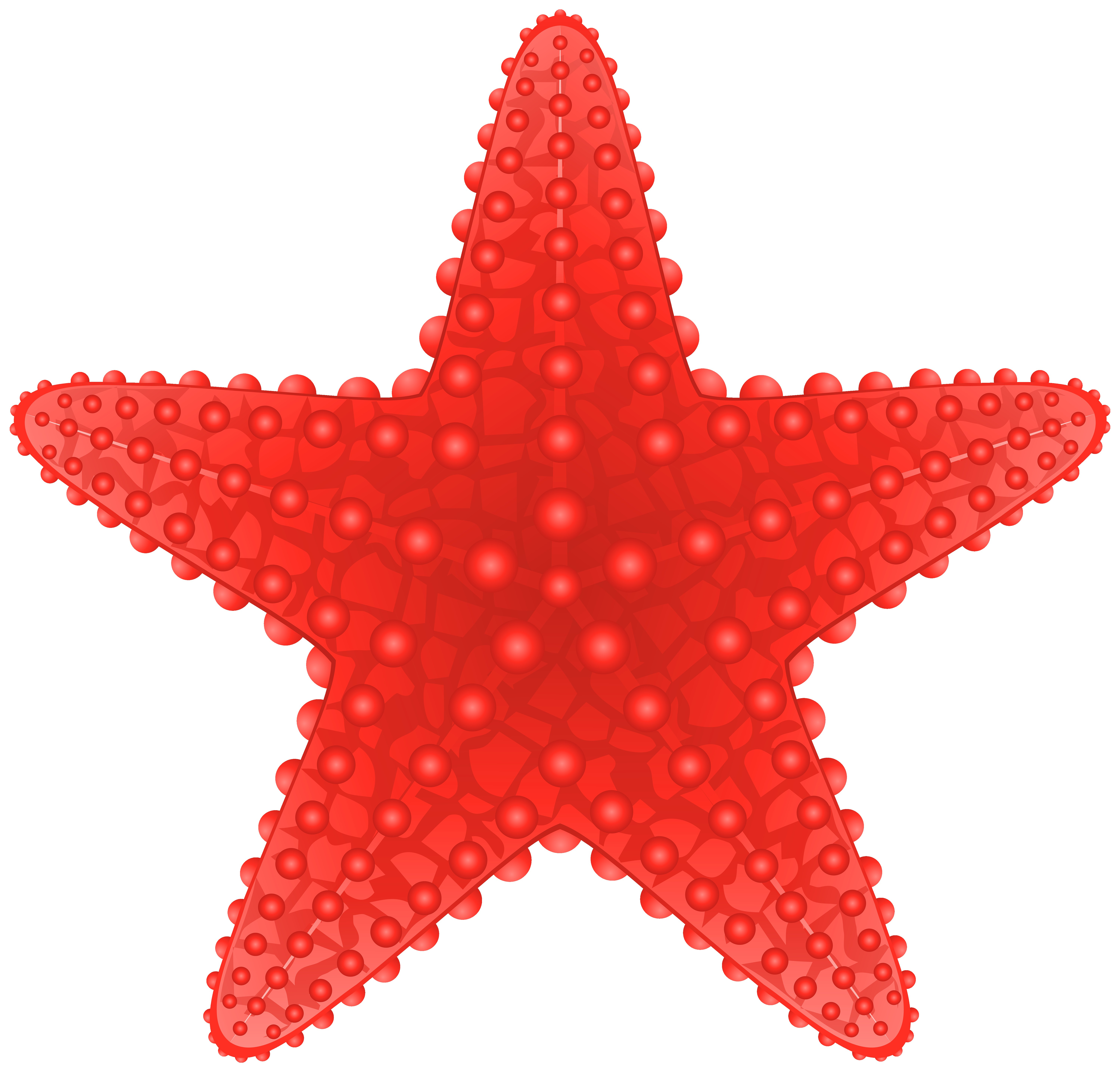 6000x5741 Starfish Transparent Png Clip Art Image Gallery Yopriceville