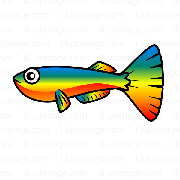 600x600 Fish Free Download Clip Artamp Cripart