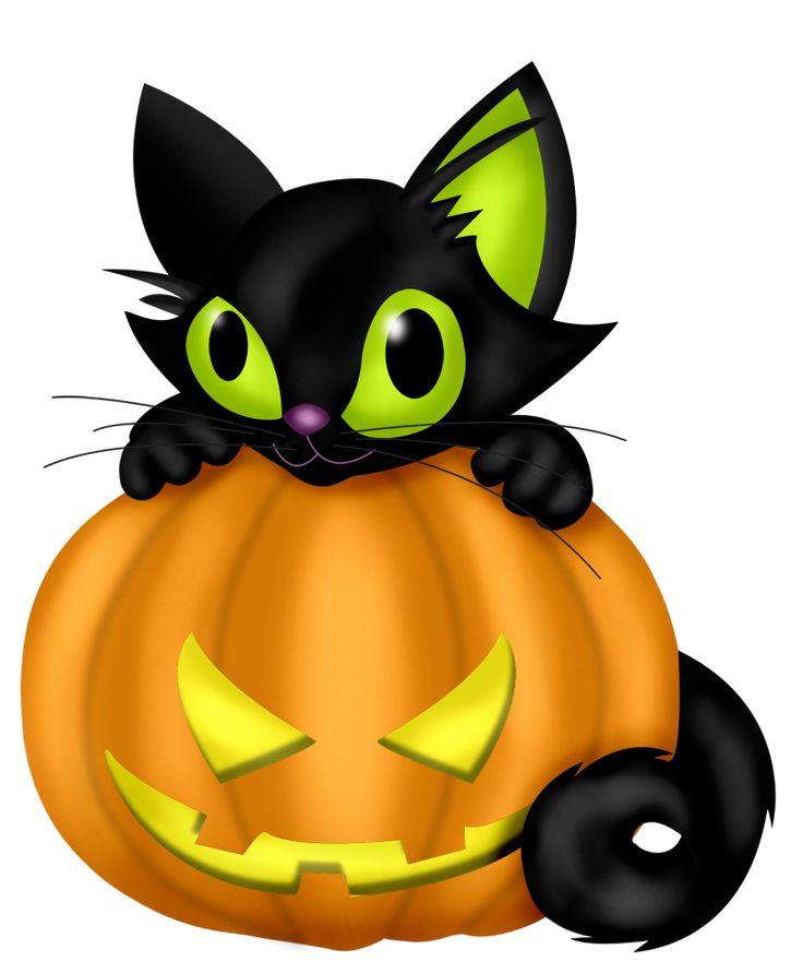 736x891 Collection Of Halloween Cat Pumpkin Clipart High Quality