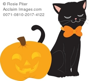 300x274 Black Cat And Halloween Jack O Lantern Pumpkin