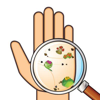 Handwashing Clipart