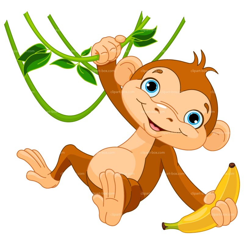 800x800 Monkey Eating Banana Clipart 101 Clip Art