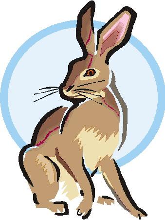 339x452 Rabbits Clip Art Farm