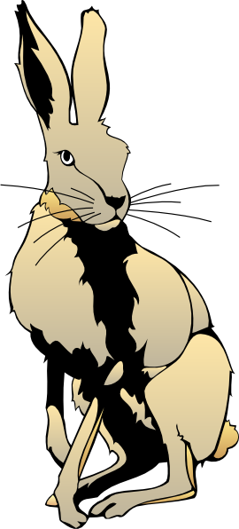 270x596 Top 93 Hare Clip Art