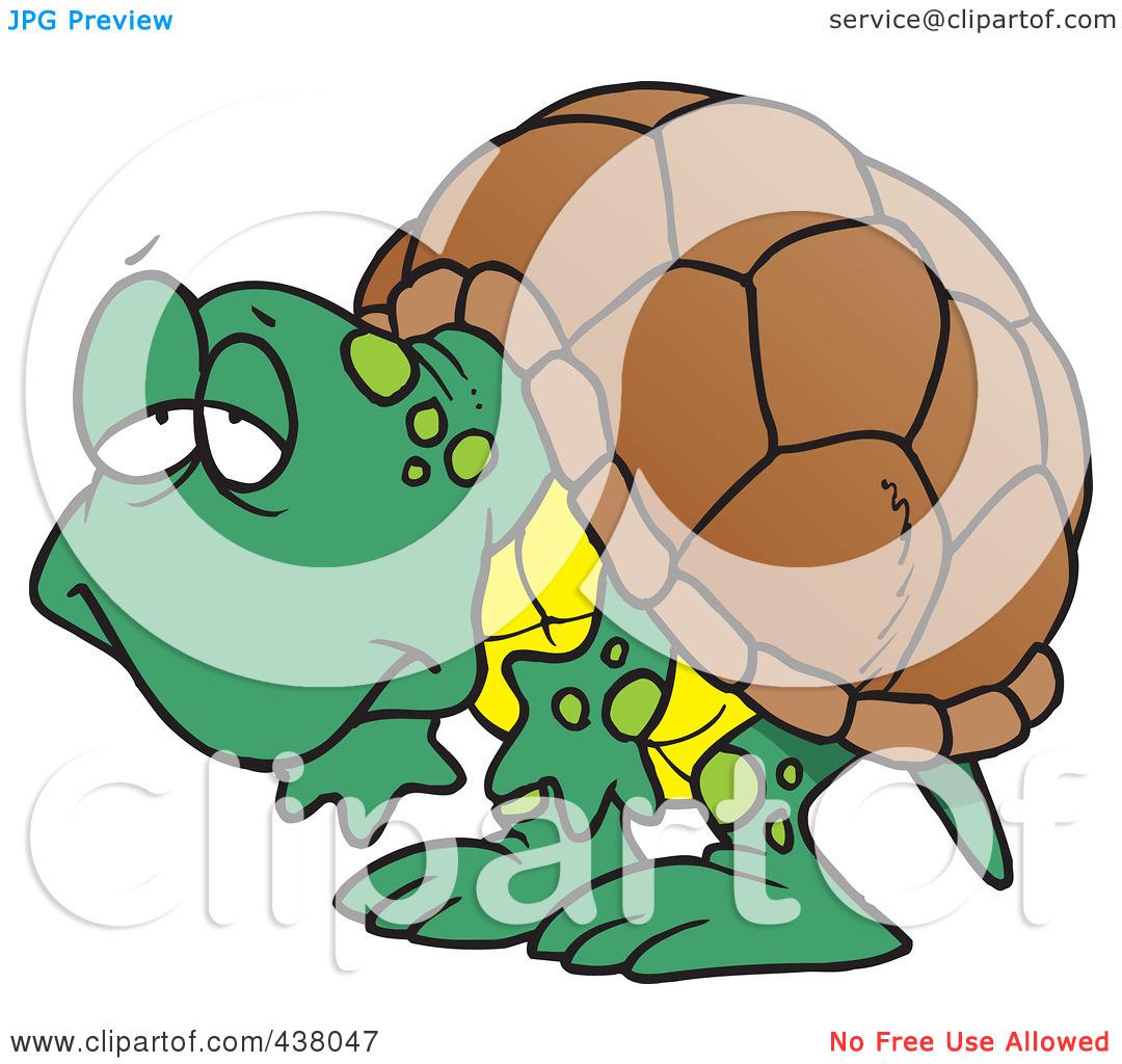 1080x1024 Tortoise Clipart Clipart Panda