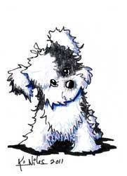 Havanese Drawing at GetDrawings.com | Free for personal ...