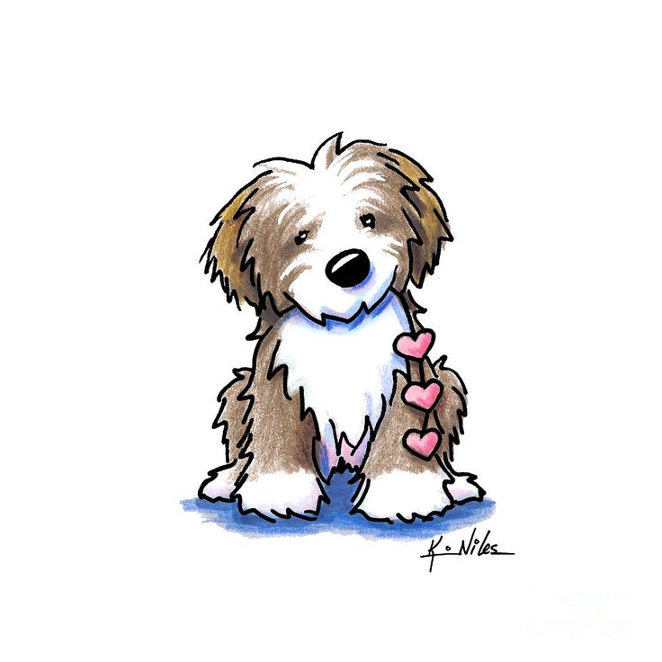 Havanese Clipart at GetDrawings.com | Free for personal ...