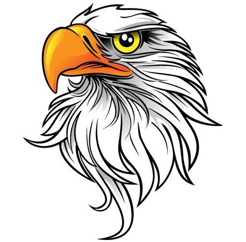 500x492 Eagle Clipsrt Clipart Eagle Download This Clip Art