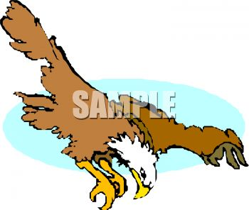 350x296 Picture Of A Hawk Flying Ready To Dive Into His Prety In A Vector