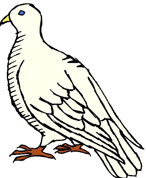 490x596 Pigeons Clip Art Farm