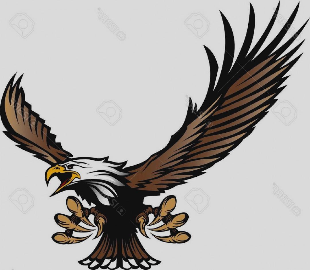 1080x940 Wonderful Hawk Clip Art Clipart Gif Panda Free Images
