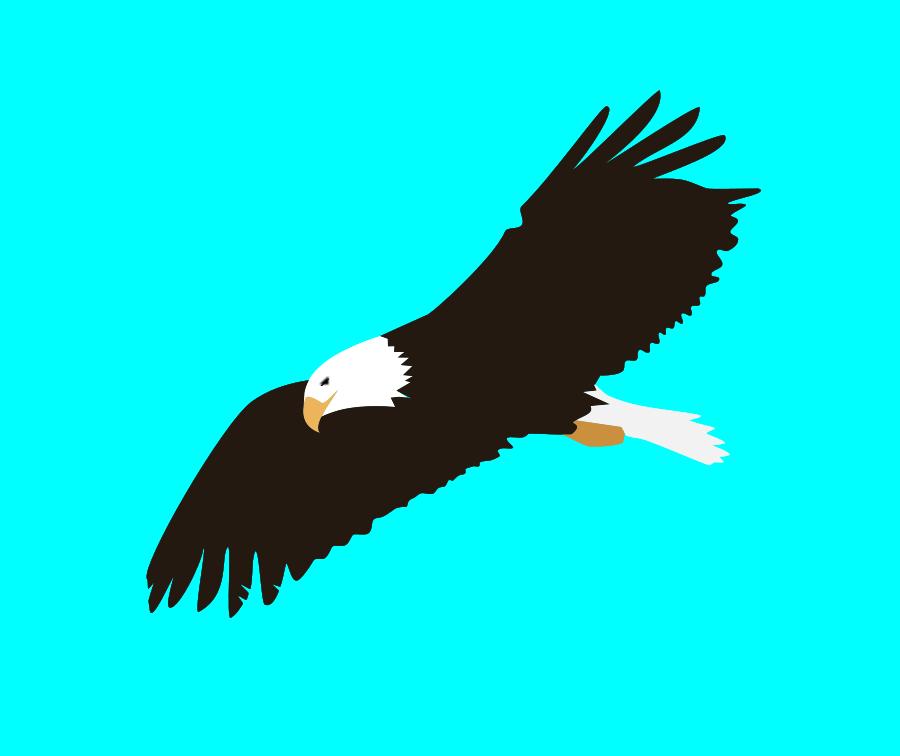 900x756 Bald Eagle Clip Art
