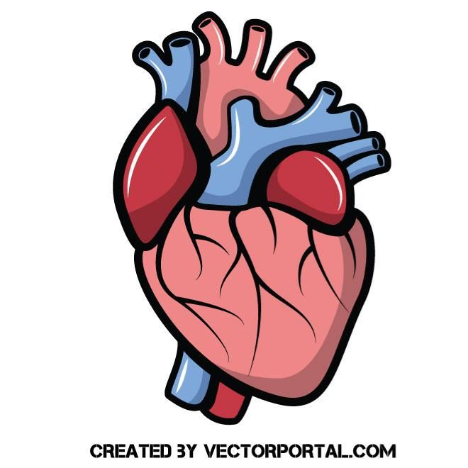 660x660 96 Best Health Vector Images Images