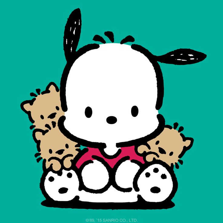 736x736 175 Best Pochacco Images On Sanrio, Hello Kitty And Kawaii