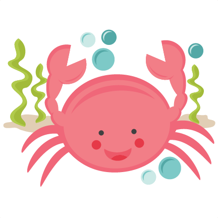 432x432 Cute Hermit Crab Clipart Free Images