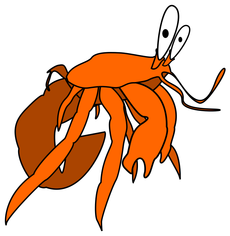 777x800 Hermit Crab Clipart Free Download Clip Art Free Clip Art