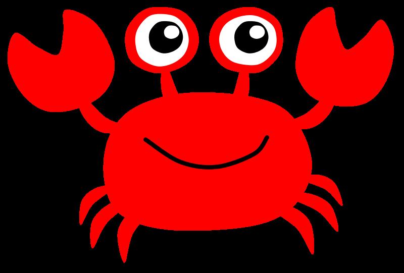 800x541 Hermit Crab Clipart Baby Crab