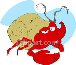300x259 Bored Hermit Crab Thinking
