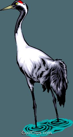 256x480 Common Crane Royalty Free Vector Clip Art Illustration Anim0061