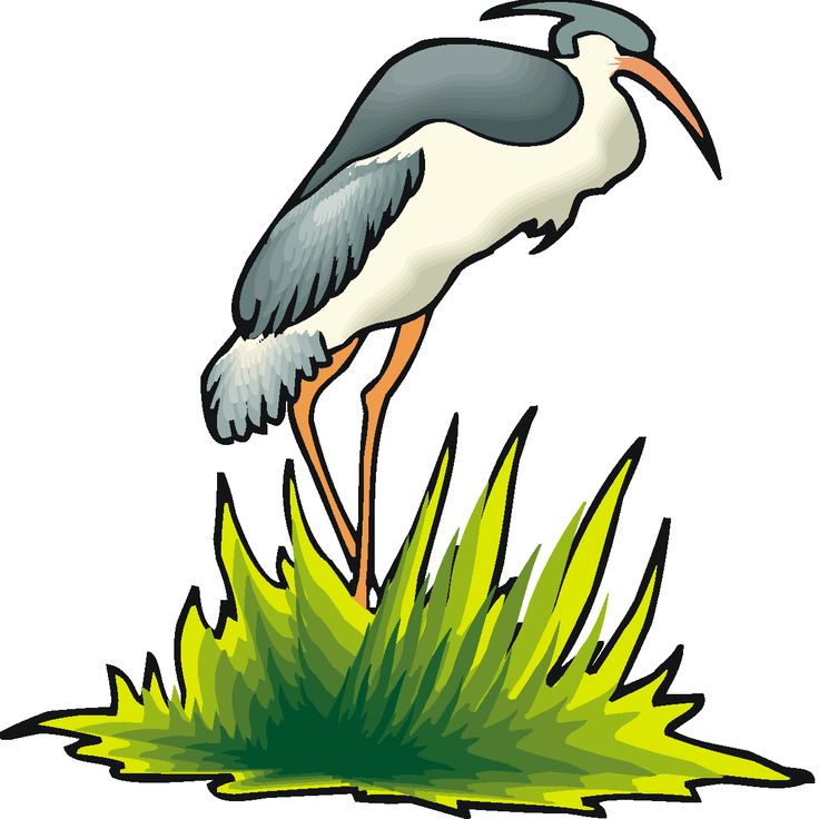 736x736 7 Best Graphic Prints Images On Graphic Prints, Heron