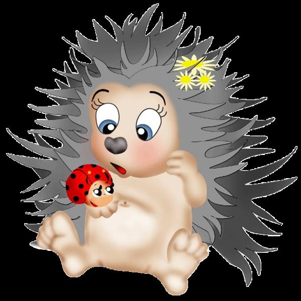 600x600 Hedgehog Clipart Transparent Background