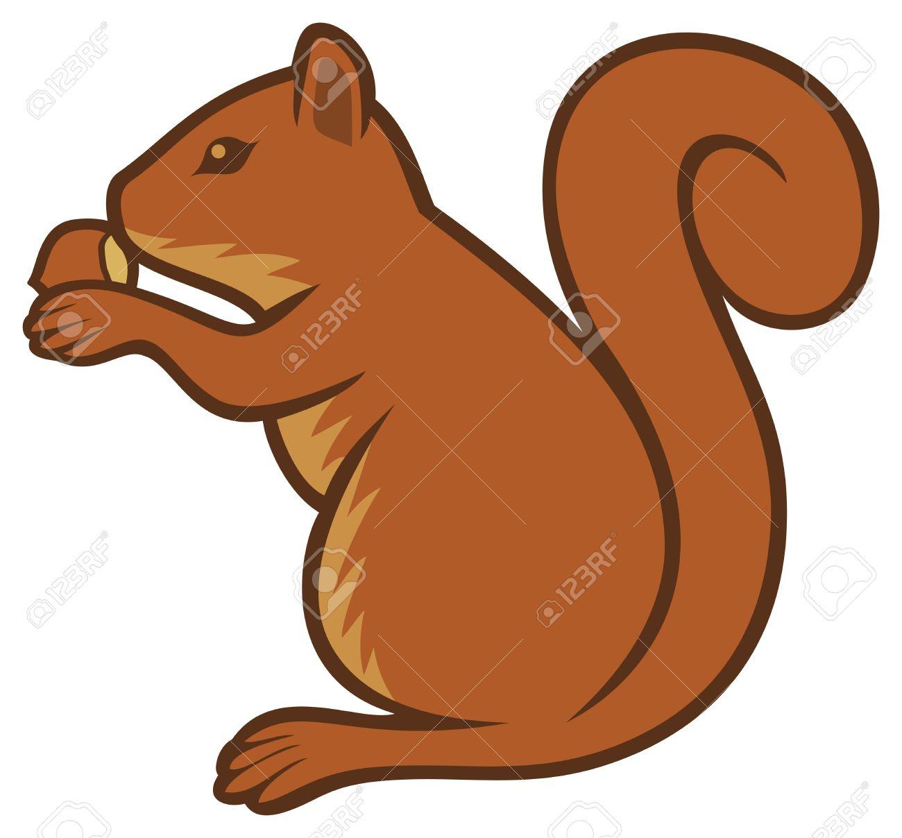 1300x1208 Top 87 Squirrel Clip Art
