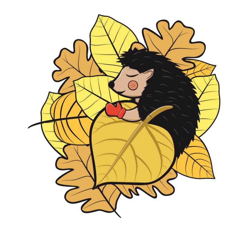 744x800 European Hedgehog Hibernation Clip Art