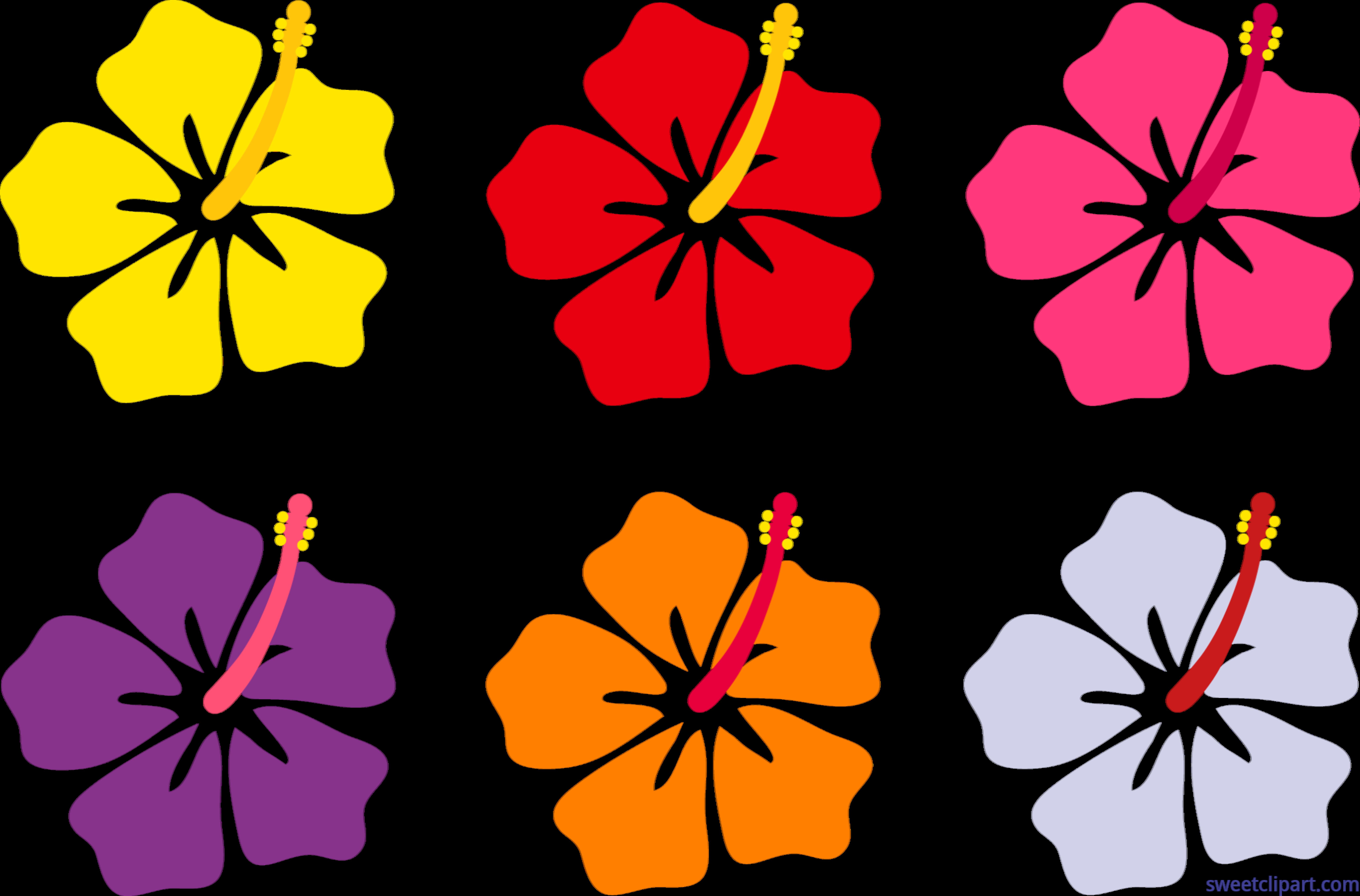 8230x5425 Hibiscus Flowers Set Clip Art