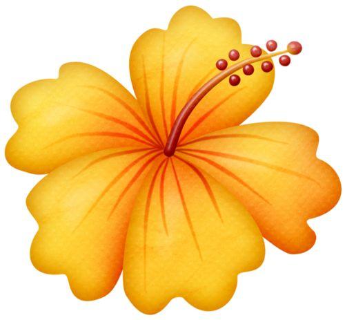 500x463 Hibiscus Clipart Beach Flower