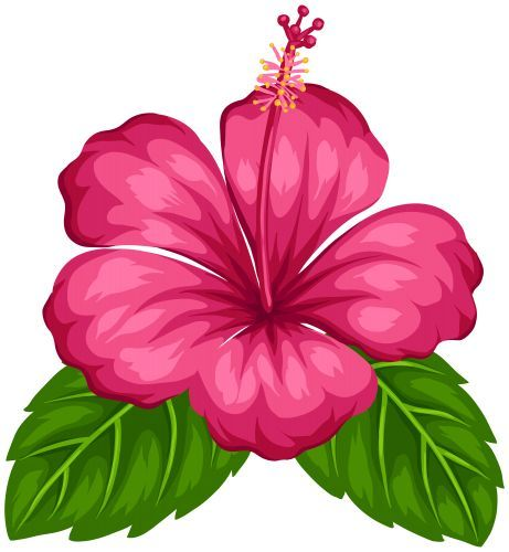 461x500 Exotic Flower Png Clip Art, Flowers Png Clipart