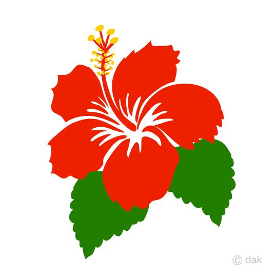 540x540 Free Simple Hibiscus Flower Clip Art Cartoon Amp Clipart