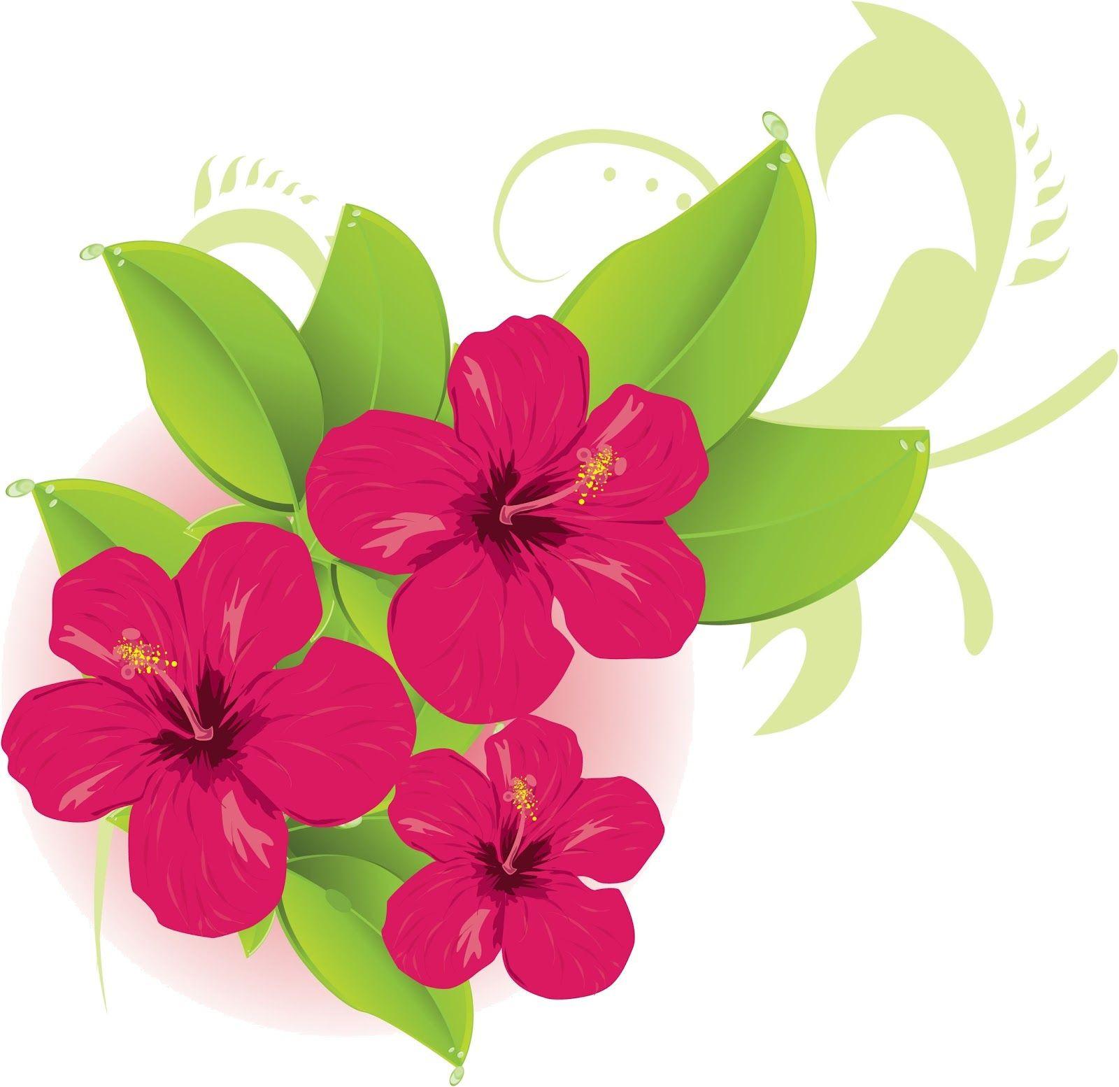 1600x1554 Hawaiian Flower Clip Art Hibiscus Flowers In Six Colors Free