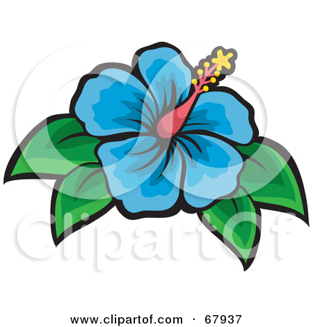 450x470 Blue Hibiscus Clipart