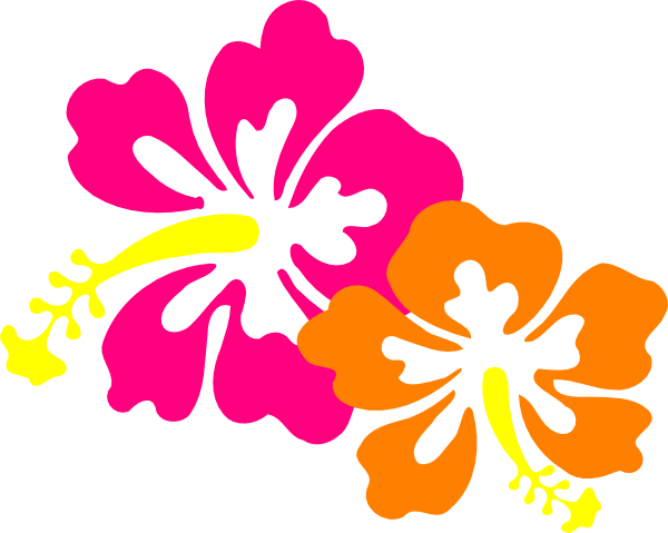 600x479 Cartoon Hibiscus Flower