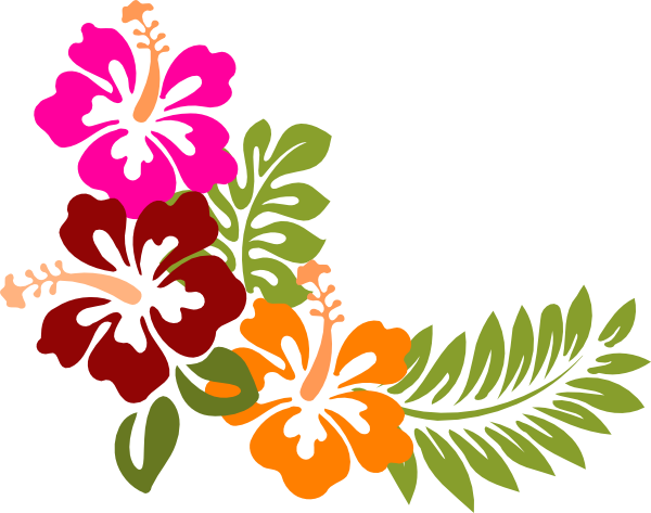 600x473 Hibiscus Clipart Clipartlook