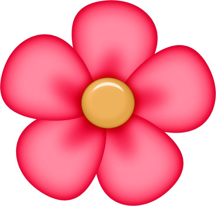 736x701 Red Flower Clipart Real Flower 3845385