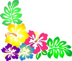 236x201 White Exotic Flowers Decoration Png Clipart Exotic Flowers