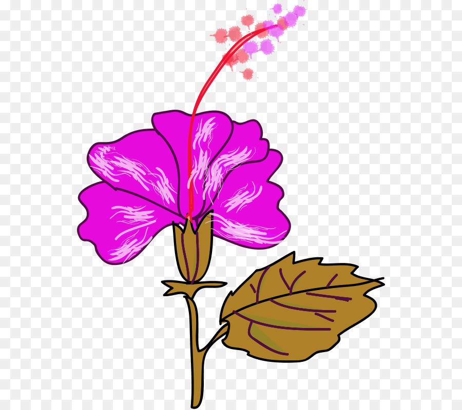 900x800 Flower Hawaiian Hibiscus Shoeblackplant Clip Art