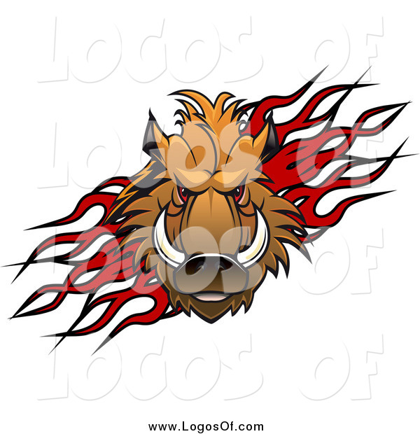 600x620 Vector Clipart Of A Red Eyed Razorback Boar Over Flames Logo By