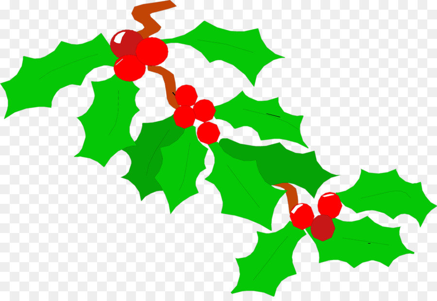 900x620 Common Holly Clip Art