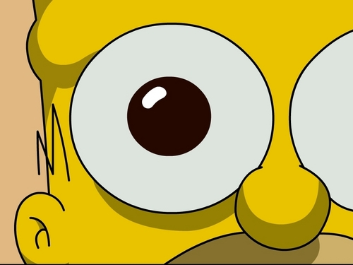 500x375 Homer Simpson Images Homer Simpson Hd Wallpaper And Background