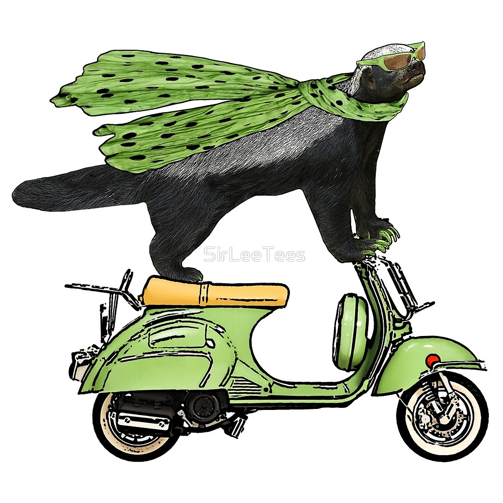 1000x1000 Honey Badger On Vespa By Sirleetees Redbubble