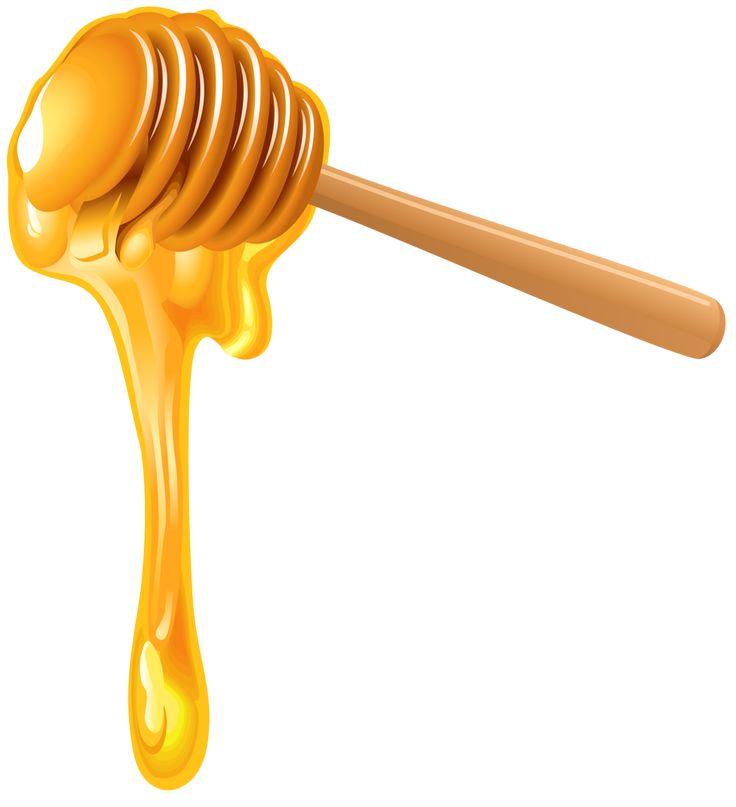 736x807 Opulent Ideas Honey Clipart Bee Clip Art Free Vector Download 215
