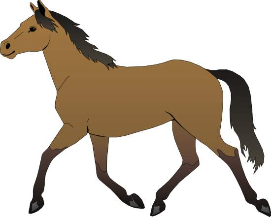 550x441 Free Clipart Horse