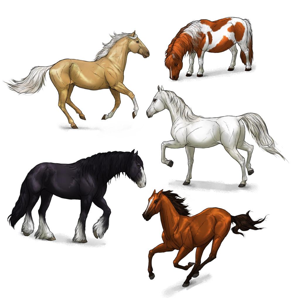 1000x1018 Drawn Horse Mustang