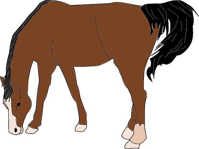 640x479 Imagen Gratis En Pixabay